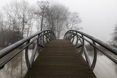 Jubliee Bridge Fog (taperoo2k) Tags: fog oxford christchurchmeadow jubileebridge kevintaphousephotography