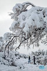 0223 IMG_2801 (JRmanNn) Tags: snow lasvegas bluediamond springmountains coolerdays coolingdown beattheheat