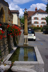 """fontaine_st-blaise • <a style=""""font-size:0.8em;"""" href=""""http://www.flickr.com/photos/97058259@N02/27901552664/"""" target=""""_blank"""">View on Flickr</a>"""
