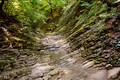Waterway (grce) Tags: geology mountains mountainforest stones stone water stream inthemountains landscape nature canon canoneos550d