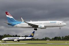 Luxair 737-800 LX-LGV (birrlad) Tags: dublin dub international airport ireland aircraft aviation airplane airplanes airline airliner airlines airways approach arriving arrival finals landing runway boeing b737 b738 737 737800 7378c9 lxlgv luxair lgl782 faro