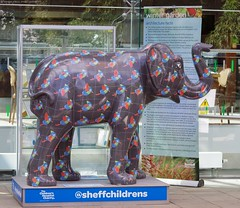 Herd of Sheffield elephant sculptures (38) (Simon Dell Photography) Tags: herdofsheffield herdof sheffield herd eliphants statues town city sculptures colorfull awsome 2016 trail see find them locations