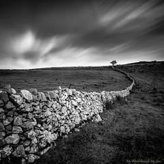 The tree at the end of the world (MyWorldThroughMyLens) Tags: uk longexposure blackandwhite white tree green monochrome field grass wall clouds landscape britain derbyshire peakdistrict great peak fields lonely earl vanishing depth drystone sterndale cloudtrails
