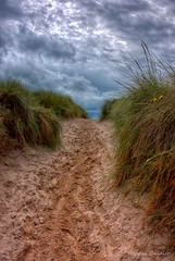 Steep Trek Up From The Beach (Light+Shade [spcandler.zenfolio.com]) Tags: stephencandlerphotography spcandler stephencandlerphotography httpspcandlerzenfoliocom stephencandler england uk lightshade beach dunes grass pathway sand steep bamburgh northumberland coast