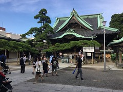 image (Stop carbon pollution) Tags: japan 日本 honshuu 本州 toukyou tokyo 東京 kantou 関東