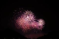Firework - Grandes Eaux Nocturnes du chteau de Versailles (theMisterNL) Tags: chteaudeversailles versailles chateaudeversailles night summer firework colors