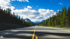 Road trippin' (Mark Hosmar) Tags: icefields parkway olympus omd walimex 12mm