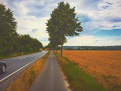 #autobahn#fahrradweg (serwantalabani) Tags: autobahn