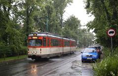 Waterballet (Maurits van den Toorn) Tags: tram strassenbahn tramway tranvia villamo elctrico streetcar dwag frankfurt fvg poznan posen polen poland regen rain pluie nat wet