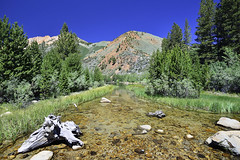 North Fork of Bishop Creek leaving North Lake (murraycdm) Tags: red northlake bishopcreek highsierra 395 sierranevada sierra ronanmurray murraycdm nikon d800e 1635mm bishop route168 us395