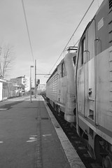 grosseto inverno 2016 #19 (train_spotting) Tags: grosseto trenitalia ic35211 intercity divisionepasseggeri e4030066iti e403006 nikond7100