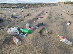 Disgusting How We Treat Our Environment & Beaches (Alex.Gubbels, P.Eng., PMP) Tags: garbage beaches environment quotes