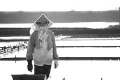 salt pan (Clarke Chen) Tags: bw saltpan labor local taiwan tainan documentary