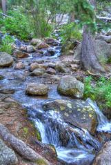 Chicago creek ..mt Evans Colorado (Pattys-photos) Tags: chicago creek mt evans colorado woodchuck