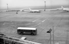 Heathrow  M172 003sm (Preselector) Tags: heathrow airport bea rf bus caravelle londontransport aec