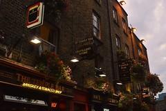 Temple bar ~ Dublin (camillaanselmi) Tags: guinness irishbeers beer young amazing saturday night light irishpeople irishpub pub bar dublinmoment dublin summer beautiful templebar magical magic ireland