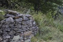 Sono ancora qua (marco.servalli92) Tags: old muro land landscape agricolo agreste