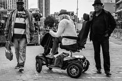 Three Hats @ Rotterdam (PaulHoo) Tags: nikon rotterdam holland netherlands 2016 summer city urban bw monochrome blackandwhite contrast three 3 hats wheelchair disabled smile gangsters fashion men group people gang shopping