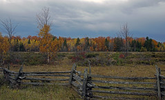 another find from the bottom of my camera bag (Wil James) Tags: elements fall ontario colours changing tamron 1750 sonya77mk2 sonyilca77mk2 trees fields fence splitrail zigzag