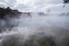 Rotorua Hot Springs-10