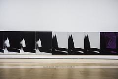 Andy Warhol - Guggenheim Museum, Bilbao (Naomi Rahim (thanks for 3.5 million visits)) Tags: bilbao spain españa basque basquecountry europe europa 2016 guggenheimmuseum guggenheim art gallery modernart travel travelphotography nikon nikond7200 wanderlust culture andywarhol shadows screenprint