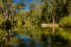 Goin' round the bend (jenni 101) Tags: australia lawnhillgorge outbackqld queensland boat reflections river