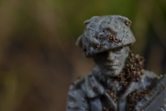 In Country (mitchell_dawn) Tags: luckycharm goodluck soldier toysoldier army garden grey dirt