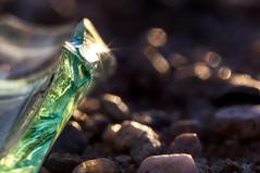 Awaiting the unsuspecting traveler (hdtharp35) Tags: macromondays glass green naturallight 100mm macro edge