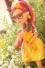 Rosabella Beauty, EAH (Osmundo Gois) Tags: rosabella beauty ever after high doll mattel