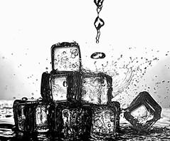 Tumblin dice. (johnsinclair8888) Tags: watersplash macro water cubes action motion nikon sigma 105mm d750 splash art blackandwhite mono bw depthoffield