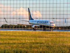 Ryanair - London Luton Airport (laurent.liu) Tags: uk dublin london plane airplane fly airport aircraft irland eire boeing ryanair luton 737 boeing737 flyingbird eiekl