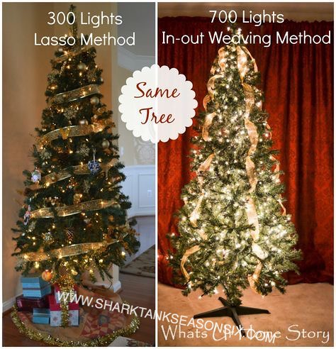 Shark Tank Christmas Tree Lights.The World S Best Photos Of Light And Sharktankproducts