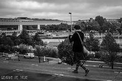 BNF et Bercy (GencivedeTruie) Tags: street bridge urban blackandwhite paris france streets color architecture river landscape noiretblanc mtro streetphotography aerial bnf bercy urbanlandscapes bibliothquenationaledefrance quais laseine mtroparisien