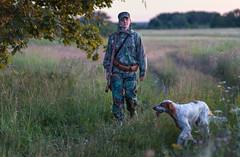 Охота с английским сеттером. (Alexander Chibirkin) Tags: охотасанглийскимсеттером английскийсеттер охота с легавой фотограф саров собака в движении hunting english setter фото животных собакой