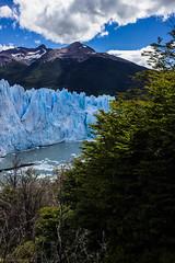 glaciar Perito Moreno (Homayra Oyarce G.) Tags: patagonia paisajes naturaleza argentina paz glaciar elcalafate glaciarperitomoreno parquenacionallosglaciares provinciadesantacruz