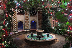 Longwood Gardens 12 (2015, 01-04) (John Frattura) Tags: christmas winter philadelphia garden lights pennsylvania january conservatory christmastree christmaslights pa longwoodgardens longwood 2015 qqqq kennettsquare