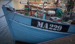 MA 229 (Jorden Esser) Tags: maassluis fishingship ma229