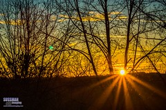 Good morning 2015 (The Suss-Man (Mike)) Tags: sky sun nature clouds sunrise georgia gainesville happynewyear 2015 hallcounty thesussman sonyalphadslra550 sussmanimaging firstphotoof2015