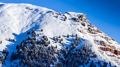 17122014-IMG_6624 (Nicola Pezzoli) Tags: santa trees winter shadow italy snow ski grden nature canon december cristina selva val alto dolomiti bolzano gardena adige 600d ortise