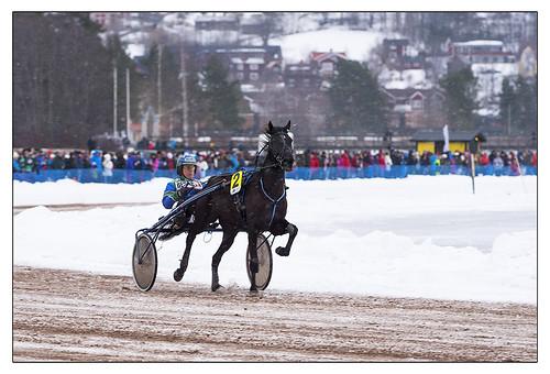 Horseracing on ice