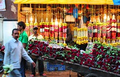 Dadar Flower Market / 16 (mariannaF) Tags: city travel flowers india flower asia market culture streetphotography documentary explore bombay mumbai flowermarket wholesale reportage dadar southasia travelphotography