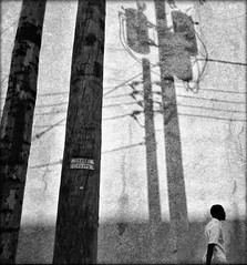Concrete Forest (D. Ingraham) Tags: city shadow urban bw texture monochrome blackwhite streetphotography delaware willmington iphone mobilephotography iphoneography instagram