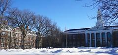 Harvard University Cambridge MA USA 52415
