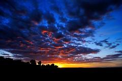 Sunset Machego (isaacbuenobadiola) Tags: sunset sky espaa sun sol azul clouds contraluz landscape atardecer rojo nikon tokina1224 paisaje tokina cielo nubes contraste puestadesol fuego fullframe lamancha castillalamancha horamgica horaazul horinzonte nikond700 nikonflickraward ibueno