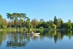 Paris/ Bois de Boulogne / Boat trip on the lake (Pantchoa) Tags: paris france boisdeboulogne lac lacinfrieur arbres eau rameurs barque couple nikon d90 1685 cielbleu beatemps reflets pins paysage loisir