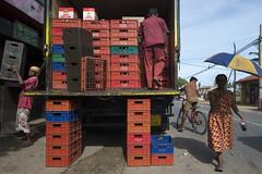 Crates (Photosightfaces) Tags: crates boxes arrack arracku whisky sri lanla lankan red srilanka srilankan rathgama people