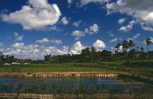 Lombok, Pura Suranadi