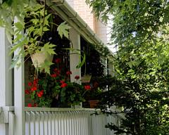 Porch (joeldinda) Tags: stjohns porch dewitt 2016 bennettfarm 3202 july railing planter branch nikond500 nikon d500