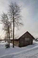 57-Kukkolankoski-07 copy (Beverly Houwing) Tags: snow forest suomi finland frozen logs storage lapland kukkola bungalow kukkolankoski
