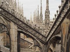 Buttresses (bingley0522) Tags: olympusep5 olympusmzuiko17mmf28 milan milano duomo cathedral buttresses ontheroof